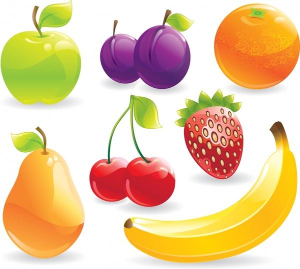fresh fruit icons shiny modern colorful design