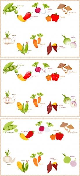 vegetables educational banner templates colorful flat symbols design