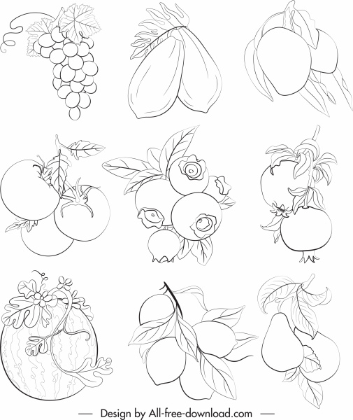 fruits icons black white handdrawn sketch