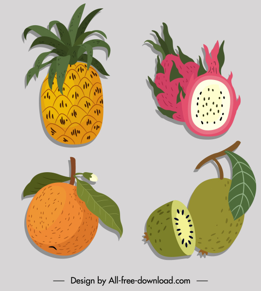 fruits icons colored classic handrrawn sketch