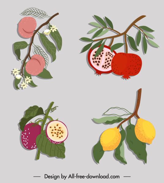 fruits icons colored retro sketch