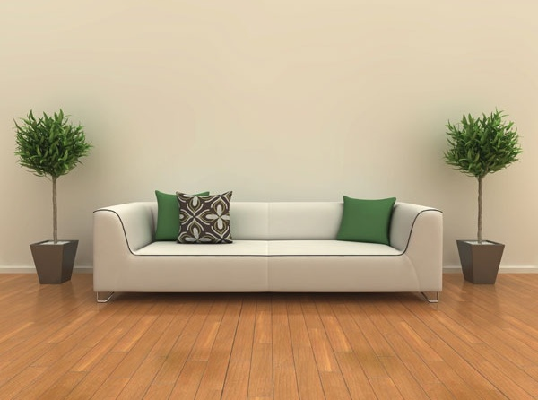 furnishings for highdefinition picture 1
