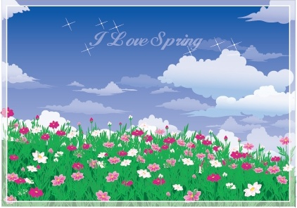 spring background colorful blooming flowers decor