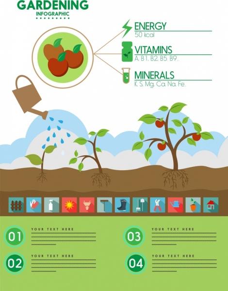 gardening work infographic fruit and tools symbols decoration