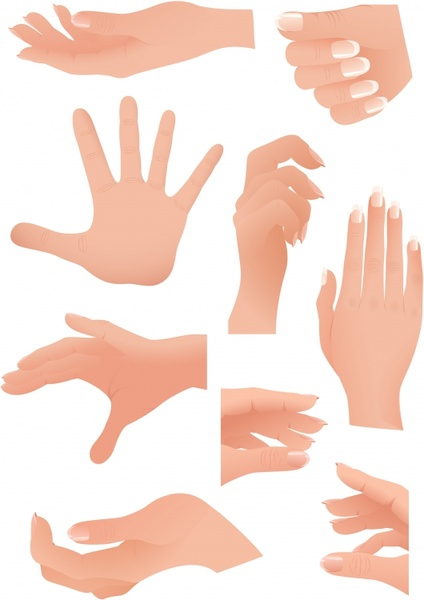 hand gestures icons modern colored sketch