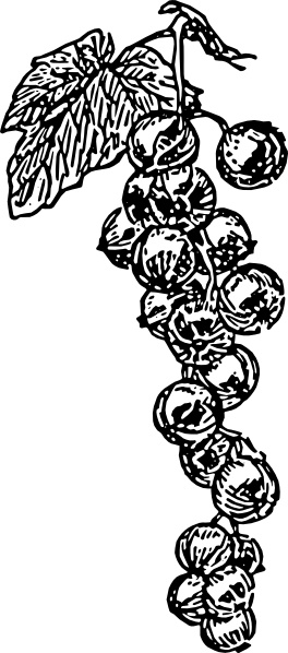 grape vine clip art free vector in open office drawing svg openoffice clip art package openoffice clip art package