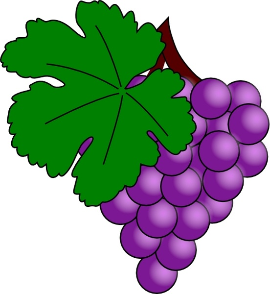 grape with vine leaf clip art free vector in open office drawing svg rh all free download com grape vine clip art images free grapevine clipart
