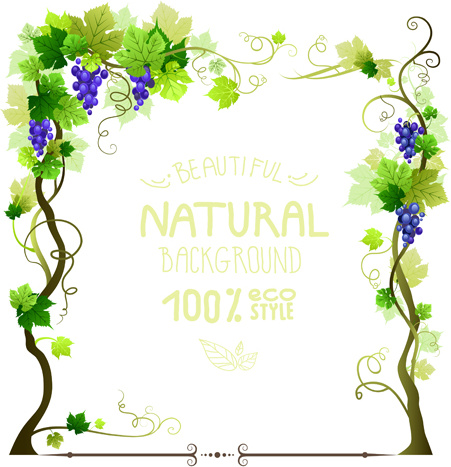 grapes tree frames natural background vector