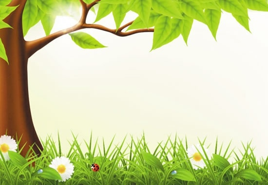 nature background modern bright tree grass flora insect
