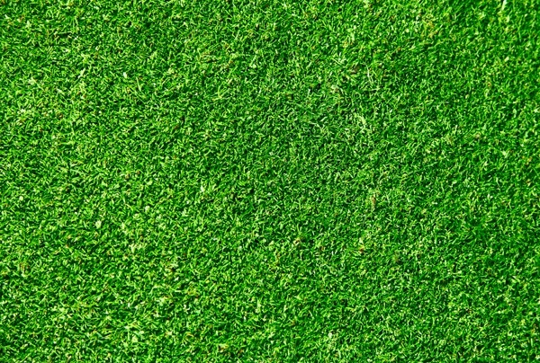 green grass 02 hd picture