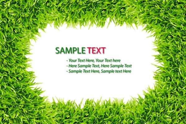 green grass background 03 hd picture