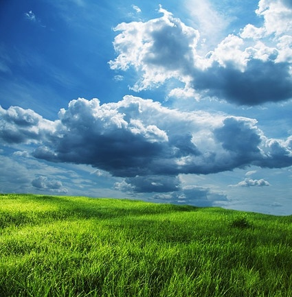 green grass blue sky picture