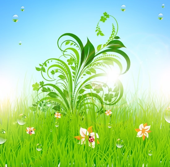 natural meadow background shiny modern leaves grass decor