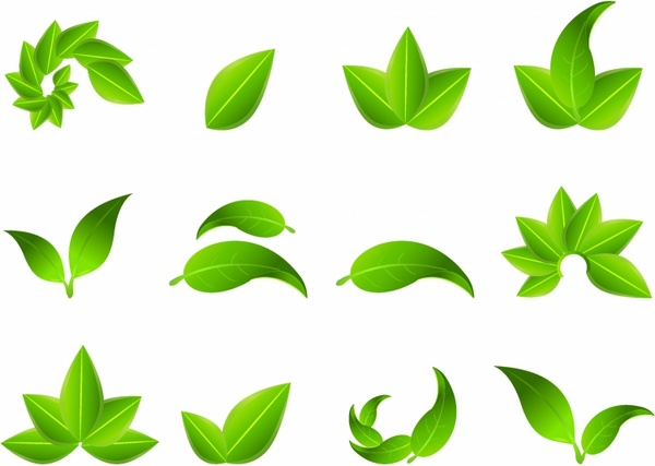 Green Leaf Icons Free Vector In Adobe Illustrator Ai Ai