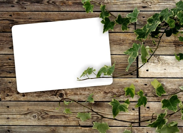 green leafy wood background 05 hd picture