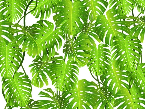 green leaves theme background 03 vector