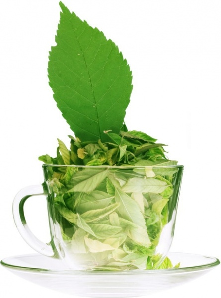 green tea highdefinition picture