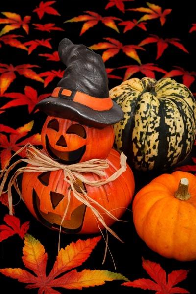 halloween decoration on black