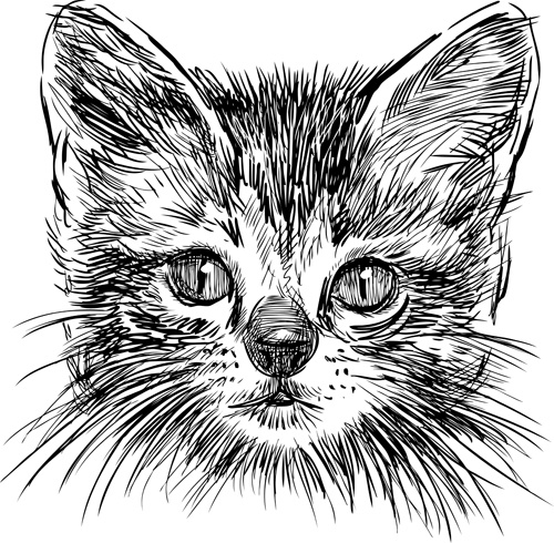 hand drawing black kittens vector