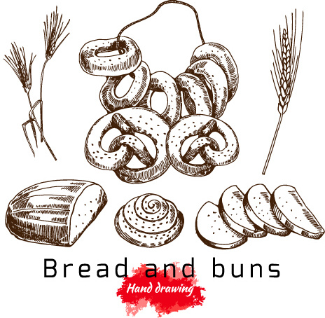 hand drawing bread and buns vector