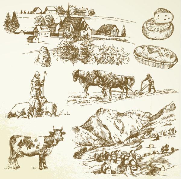 hand drawing farm design elements vector
