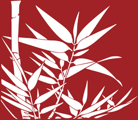 hand drawn bamboo background vector graphic