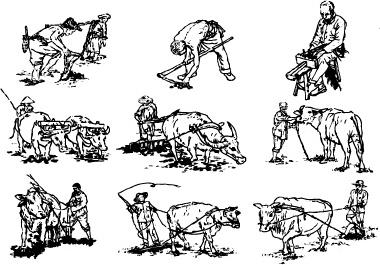 hand drawn cartoon characters vector