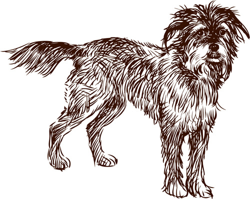 hand drawn dog art vector