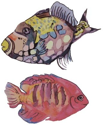 hand drawn marine fish watercolor vector