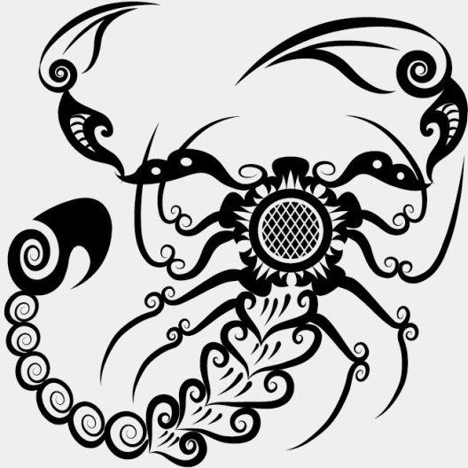 hand drawn scorpion decoration pattern vector