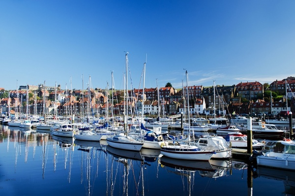 harbor in whitby