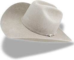 Hat cowboy white