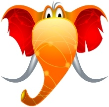 Head Elephant