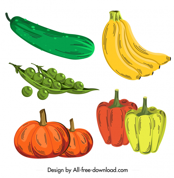 healthy food icons colored retro sketch