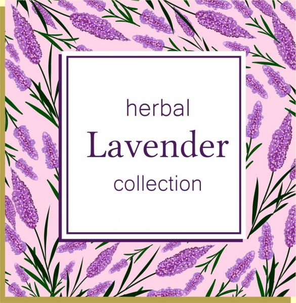 herbal background violet lavender icons repeating design