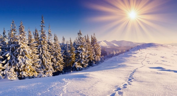 highdefinition picture of the winter landscape 8