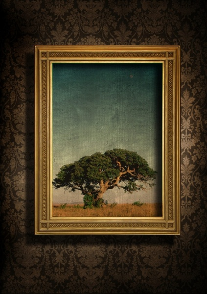highquality pictures of beautiful europeanstyle frames and wallpaper 6
