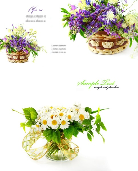 highquality pictures of beautiful flowers background pattern 2