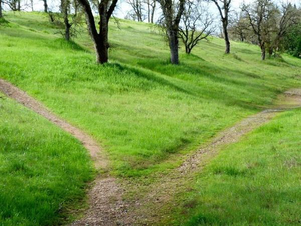 hiking path 599