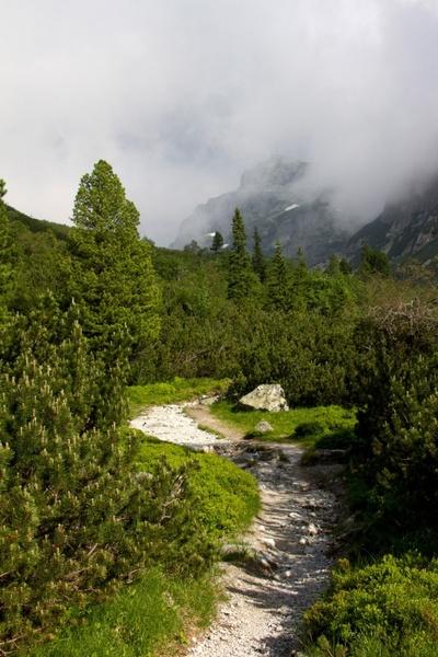 hiking path mountain