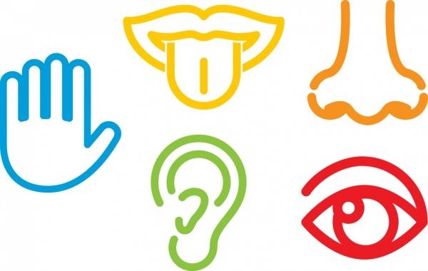 human sense design elements outline flat colorful style