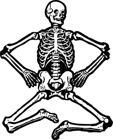 human skeleton clip art free vector in open office drawing svg rh all free download com skeleton clip art black and white skeleton clip art free printable