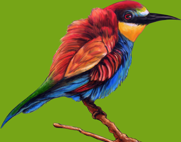 illustration of a beautiful and colorful blue red bird with green background