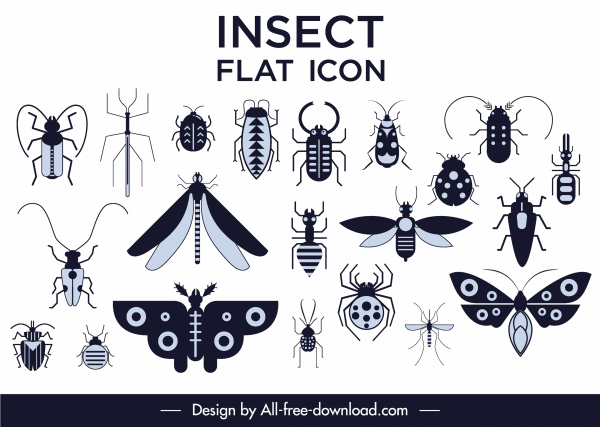 insects species icons collection black white flat sketch