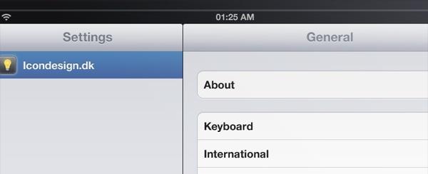 iPad Application Interface