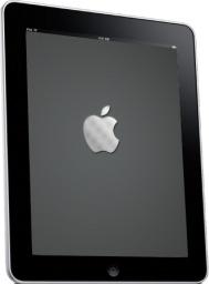 iPad Side Apple Logo