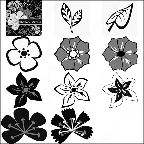 it's really easy to make floral patterns with this set. there is 10 brush