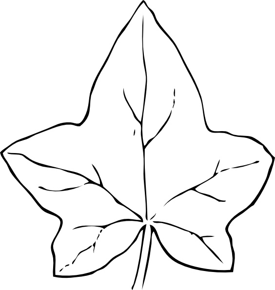 ivy_leaf_clip_art_18382 Get Inspired For Leaf Line Art Vector @bookmarkpages.info