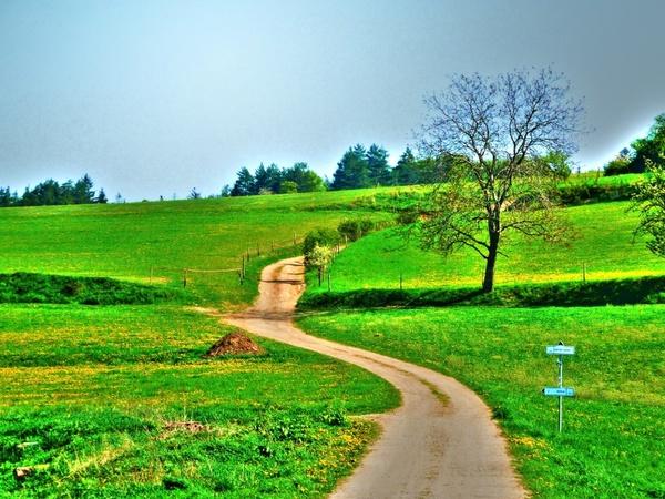 Landscape Nature Background