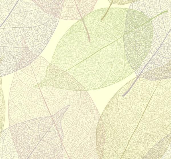 leaf background transparent design flat colored sketch